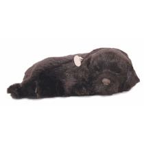 Filhote Cachorro Pelúcia Que Respira Labrador Perfect Petzzz