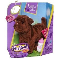 Cachorro Furreal Newborn Chocolate Lab - Hasbro