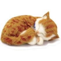 Gato Orange Tabby Que Respira Perfect Petzzz Pelúcia