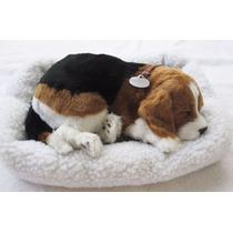 Filhote Cachorro Pelúcia Que Respira Beagle Perfect Petzzz