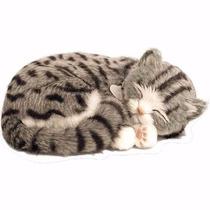 Filhote Gato Pelúcia Que Respira Gray Tabby Perfect Petzzz