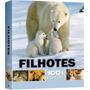 Livro - Filhotes 1001 Fotos - Animais