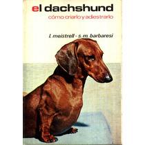 El Dachshund