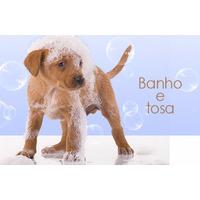 Banho E Tosa Para Todas As Raças Em Dvd! Pague Mercado Pago