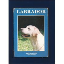 Livro Labrador - Márcio Infante Vieira - Médico Veterinário