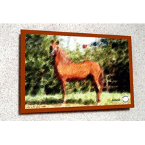 Placa Decorativa 38x27cm * Cavalo Andaluz * .art .by El Lulu
