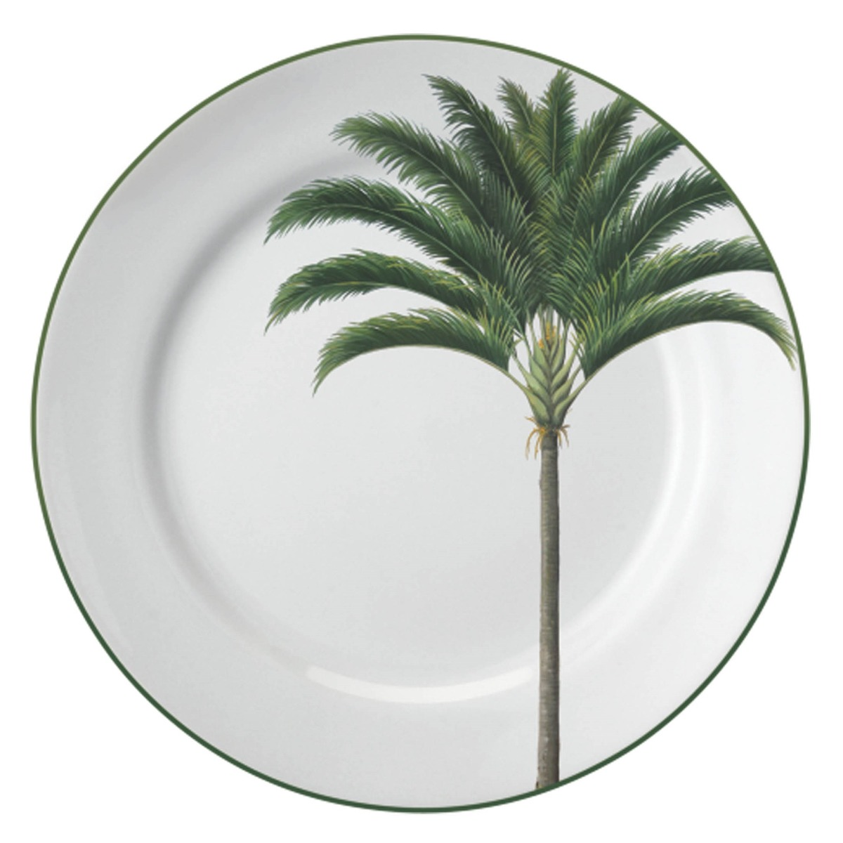 Aparelho De Jantar Palmeiras Porcelana 30 Peças Schmidt R$ 1.139 90  #776D54 1200x1200
