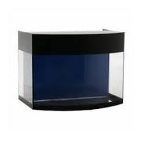 Aquário Curvo Aquaterrário Com Sump Transparente 55 Litros