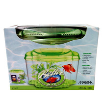 Kit Aquario Betta Verde - Marina - Meu Amigo Pet