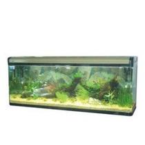 Aquário Peixes Complet Bl-1000f 240l 100x40x60cm. 110v.resun