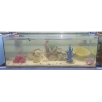 Aquario Marinho (mais Fotos)