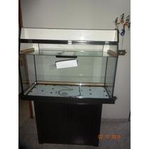 Aquario Black 100x40x50 6mm Aquario Black Com Movel E Sump