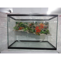 Áquario Terrário Para Tartaruga 50x25x35 Com Cascata