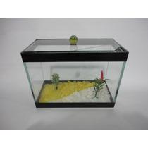 Aquario Beteira Para Peixe Betta Com Divisoria Para Dois