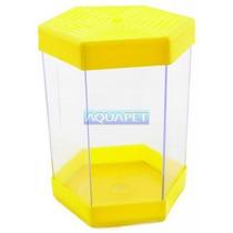 Beteira Plastica 1 Litro Litwin Amarela - Aquapet
