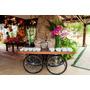 Mesa Jardineira Mediterrâneo Ideal Para Decorações De Festas