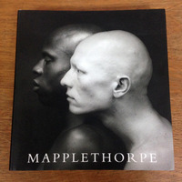 Livro Robert Mapplethorpe - Fotos Nu Masculino Gay