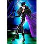 Catwoman Mulher Gato Barbie Collector Coleção Dc Comics
