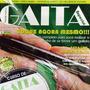 Vídeo Aula Para Gaita Iniciante Revista + Dvd Frete Grátis