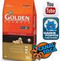 Ração Premier Golden Form.cães Filhotes Frango E Arroz 20kg