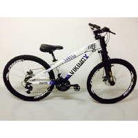 Bicicleta Viking X Tuff 25 Freio A Disco 21v Downhill Bike