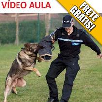 Todos Os Cães Cachorro Filhote Adestramento Canino Bolsa Dvd