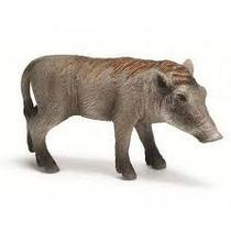 Schleich: Javali Africano Jovem - Porco Selvagem