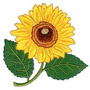 B289 Bordados Computadorizados Coleção Flores Girassol Lindo
