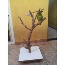 Poleiro P/ Araras , Calopsitas E Aves Menores Com Base