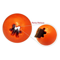 Play Dogs Training Ball® Porta Petisco Inovação Pet® M