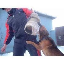 Para Todos Os Cães Cachorro, Adestramento De Cães Em 3dvd