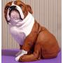 Escultura Em Resina Original Bulldog - Direto Com O Artista