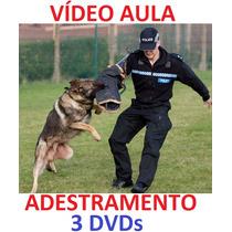 Bulldog!!! Para Todas As Raças, Adestramento De Cães 3 Dvds