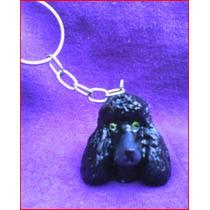 Lindo Chaveiro De Poodle - Cachorro Cães De Raça