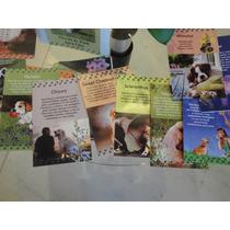 Cartas Florais De Bach - Tratamento Floral Para Cães - Pet