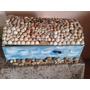 Caixa Madeira Com Pedras E Conchas - Artesanal