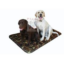Cama Cachorro Grande Porte,labrador,fila,golden, Resistente