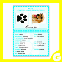 Identidade Para Cachorros, Gatos, Aves, Hamster E Outros