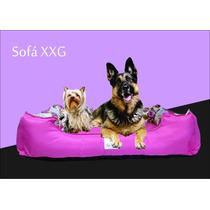 Sofá Cama Para Cachorros Grandes Microfibra Pink Bolitapet