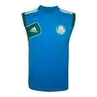 Camisa Regata Palmeiras Azul Treino Adidas 2013