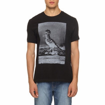 Camiseta Osklen | Calvin-klein | Reserva | John-john | Ellus