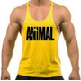 Combo 5 Camiseta Regata Super Cavada Animal Pak Musculação