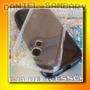 Capa Tpu Case Silicone Galaxy S4 Mini I9190 A Melhor Oferta!