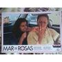 Poster Cinema Nacional = Norma Benguell = Filme Mar De Rosas