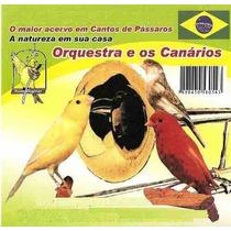 Cd Orquestra E Os Canários. Frete Grátis