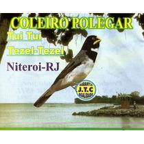 Cd O Canto Do Coleiro Polegar.cd Original. Frete Grátis