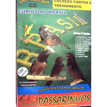 Canto Curió Do Brasil - 11 Cantos Regionais - Frete Grátis