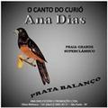 Cd Curió Ana Dias Prata Balanço. Praia Grande Super Clássic