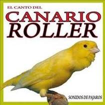 Cd De Canto Canário Roller