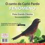 Cd Canto Pássaros Curió Pardo Fenômeno Praia Grande Clássico